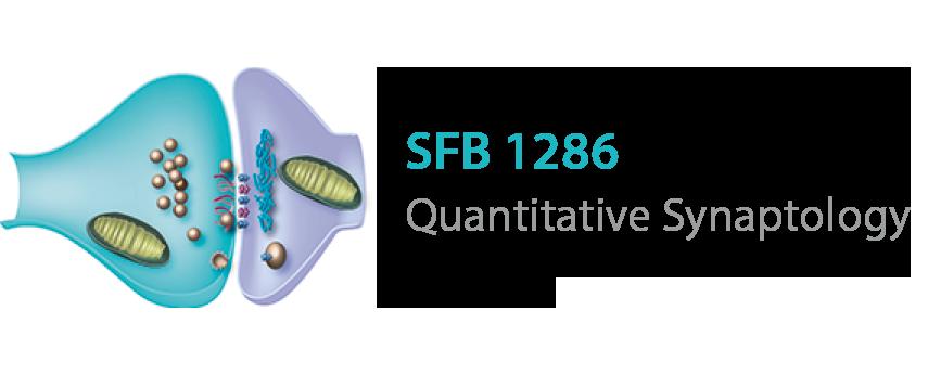 Logo SFB 1286