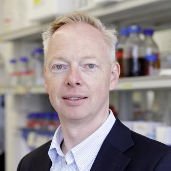 Prof. Dr. Peter Rehling